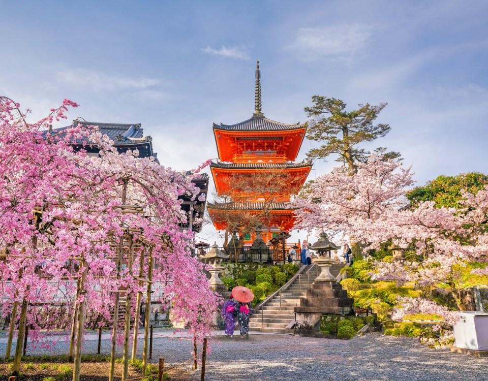 Peluang Bisnis Tempat Wisata Kekinian ala Jepang di Indonesia