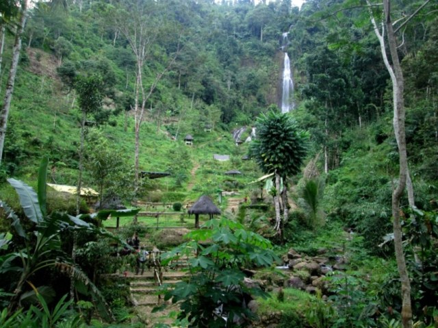 Foto: Kawasan Wanawisata Curug Pletuk di lihat dari kejauhan (dokumen pribadi)