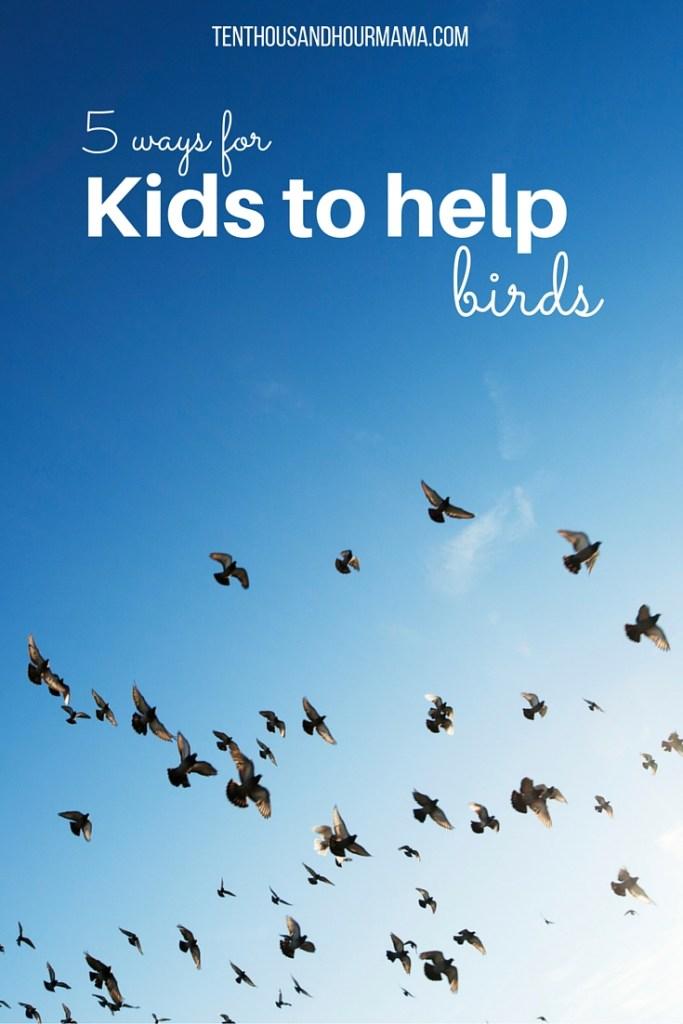 Doing good as a family: ways for kids to help birds, including DIY handmade bird feeders. Ten Thousand Hour Mama