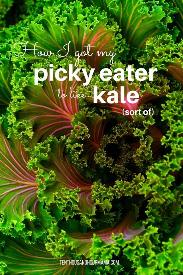 picky eater kale