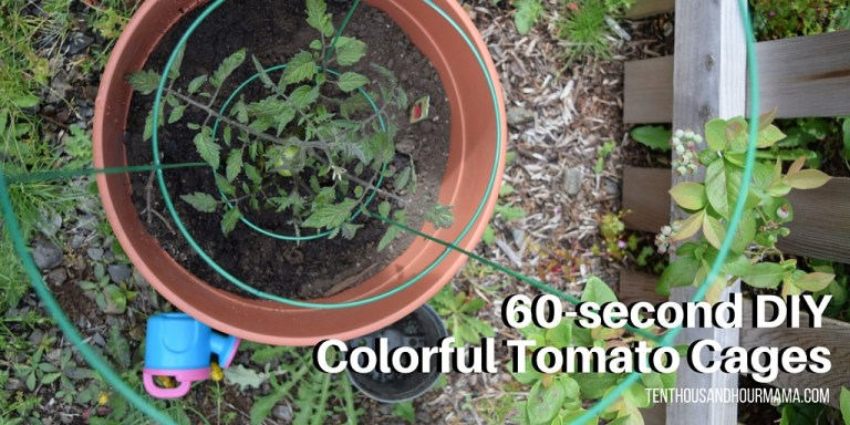 60-second DIY Colorful Tomato Cages