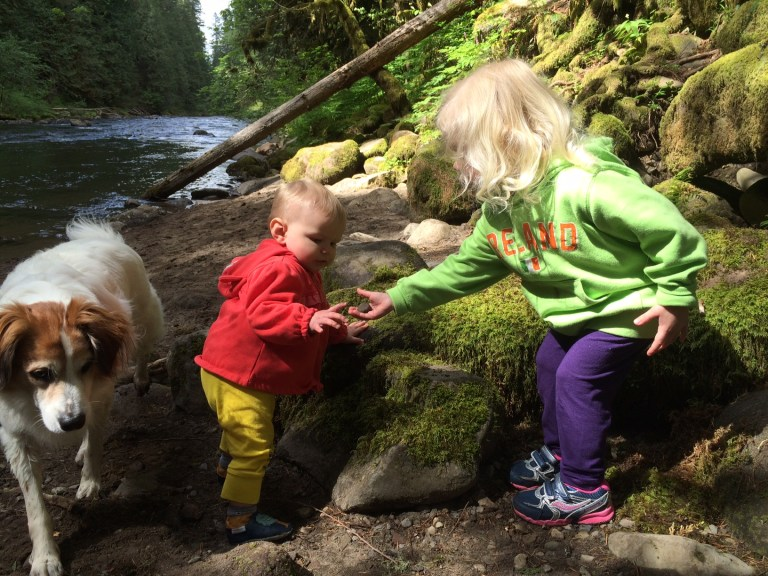 The Old Salmon River Trail on Mt. Hood, just outside Portland, Oregon, is great for a family hike: Its gentle slopes, clear river and rocky beaches make for a fun family adventure! Ten Thousand Hour Mama