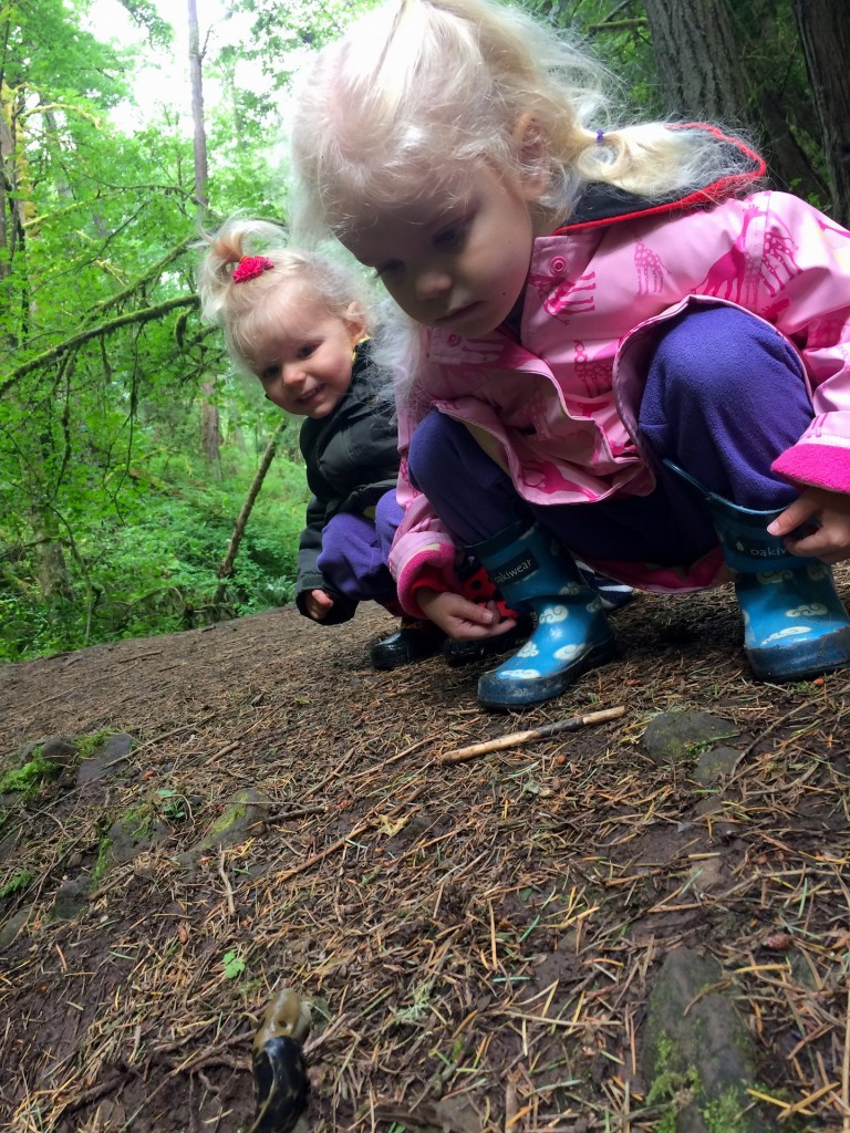 Banana slugs (the 2nd largest in the world!) are just one highlight on a family friendly hike in Portland, Oregon. Ten Thousand Hour Mama