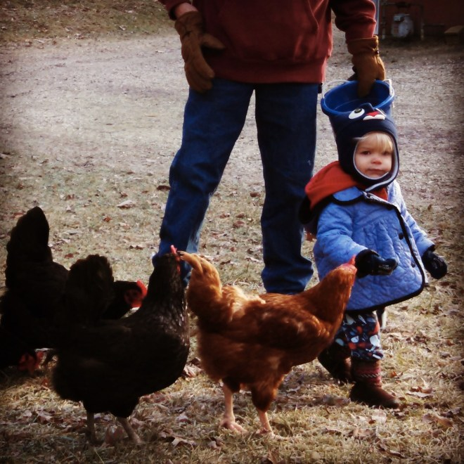 Peeper the Chicken Whisperer - Ten Thousand Hour Mama