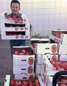Pomegranates for Rosh Hashana