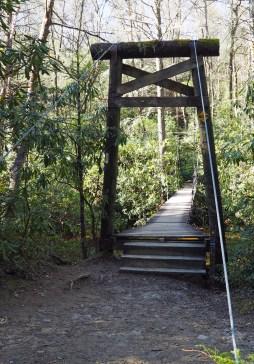 The suspension bridge over Mills River