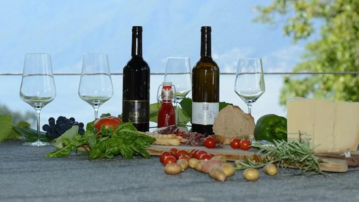 Wine tasting Cantina della Rocca, Ticino