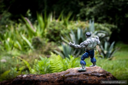 hulk standing in an open garden