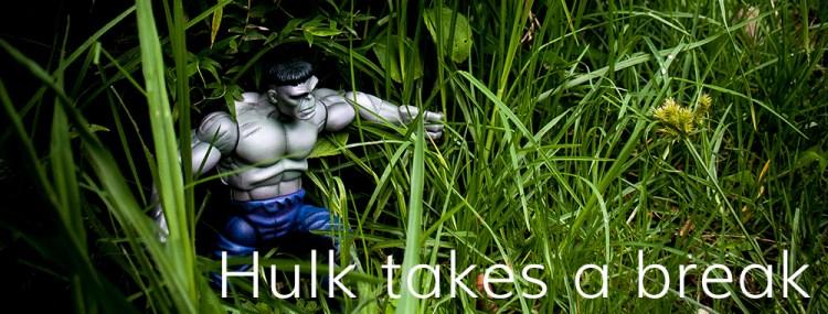 Hulk takes a break poster