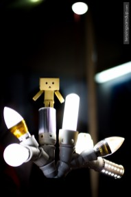 danbo lights