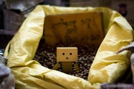 beans danbo