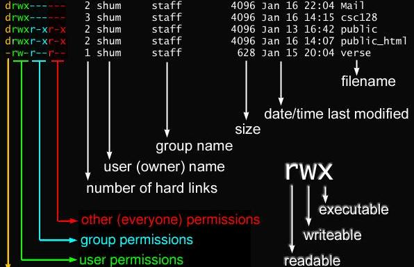 File Permission Modes