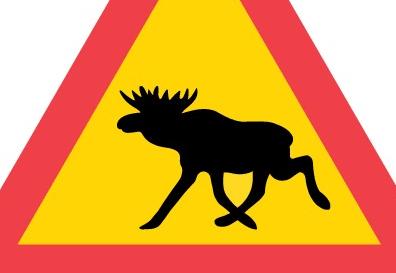 الحيوانات البرية فى السويد
