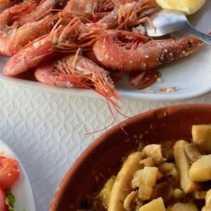 mariscos en la Costa de Faro, Portugal