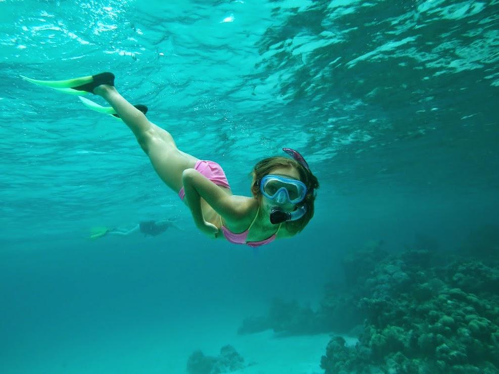 Costa Maya Snorkeling Price: $25 USD -Tequila Beach Tours
