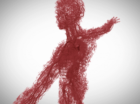 主治医が見つかる診療所11月7日 毛細血管