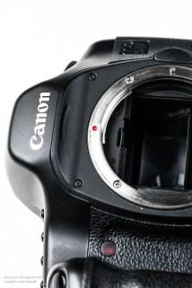 canon_5D-7201-15