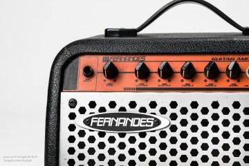 Fernandes_guitar-7319-1