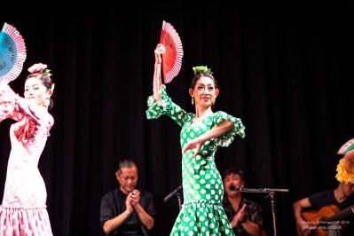 morena_flamenco-6045