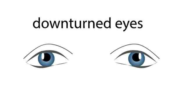 Berbagai Macam Bentuk Mata
