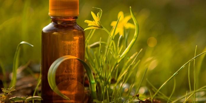 Terapia de Florais Práticas Terapêuticas SUS