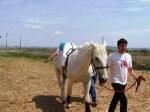 Curso Intensivo Teórico-Práctico de recursos para la intervención en Equitación Terapéutica