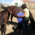 Acercándose al caballo