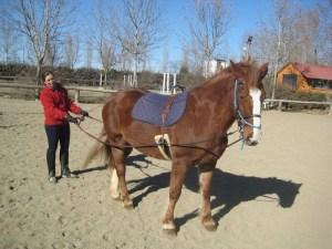 enseñar al caballo la fusta se usa como ayuda y para acariciar cuando ha hecho bién su trabajo.