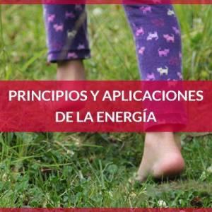 Principios y aplicaciones de la energía