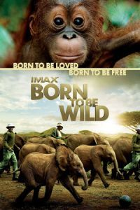 Nonton Film Born to Be Wild (2011) Subtitle Indonesia Streaming Movie Download