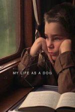 Nonton Film My Life as a Dog(Mitt liv som hund) (1985) Subtitle Indonesia Streaming Movie Download