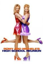 Nonton Film Romy and Michele's High School Reunion (1997) Subtitle Indonesia Streaming Movie Download