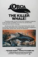 Nonton Film Orca: The Killer Whale (1977) Subtitle Indonesia Streaming Movie Download