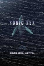 Nonton Film Sonic Sea (2016) Subtitle Indonesia Streaming Movie Download