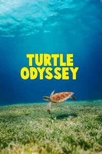 Nonton Film Turtle Odyssey (2018) Subtitle Indonesia Streaming Movie Download