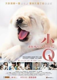 Nonton Film Little Q (2019) Subtitle Indonesia Streaming Movie Download