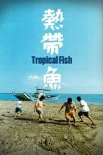 Nonton Film Tropical Fish (1995) Subtitle Indonesia Streaming Movie Download