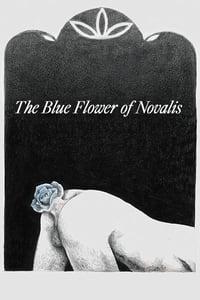 The Blue Flower of Novalis (2018)