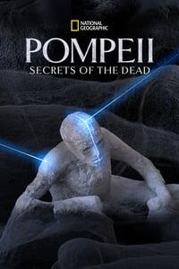 Nonton Film Pompeii: Secrets of the Dead (2019) Subtitle Indonesia Streaming Movie Download