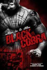 Nonton Film Black Cobra (2012) Subtitle Indonesia Streaming Movie Download