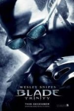 Nonton Film Blade: Trinity (2004) Subtitle Indonesia Streaming Movie Download