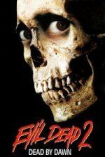 Nonton Film Evil Dead II (1987) Subtitle Indonesia Streaming Movie Download