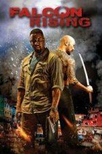 Nonton Film Falcon Rising (2014) Subtitle Indonesia Streaming Movie Download