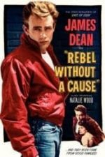 Nonton Film Rebel Without a Cause (1955) Subtitle Indonesia Streaming Movie Download