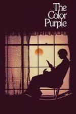 Nonton Film The Color Purple (1985) Subtitle Indonesia Streaming Movie Download