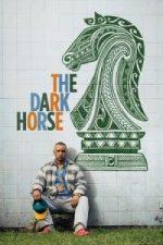 Nonton Film The Dark Horse (2014) Subtitle Indonesia Streaming Movie Download