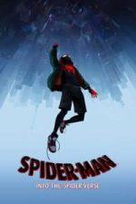 Nonton Film Spider-Man: Into the Spider-Verse (2018) Subtitle Indonesia Streaming Movie Download