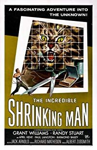 Nonton Film The Incredible Shrinking Man (1957) Subtitle Indonesia Streaming Movie Download