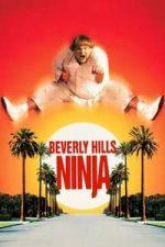 Nonton Film Beverly Hills Ninja (1997) Subtitle Indonesia Streaming Movie Download