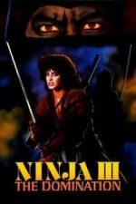 Nonton Film Ninja III: The Domination (1984) Subtitle Indonesia Streaming Movie Download